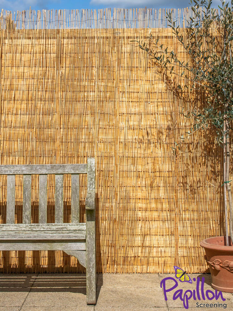 natural peeled reed screening roll garden screen fence