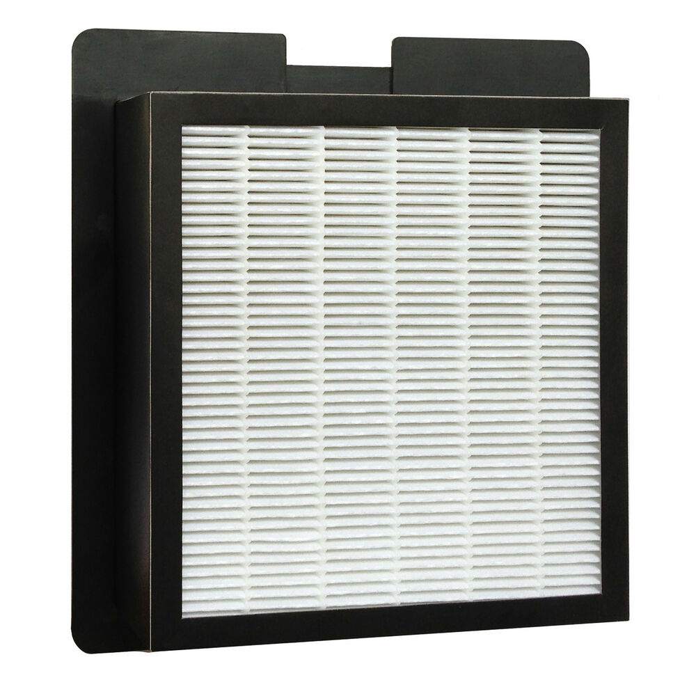 Washable Hepa Filter For Fresh Air By Ecoquest  Alpine  Xl