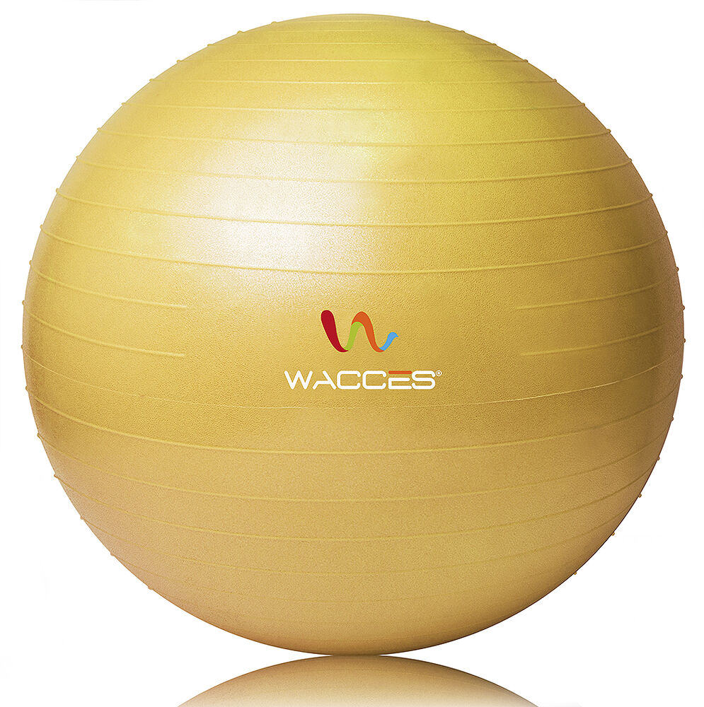 Buy 75cm Exercise Ball: New Exercise Ball & Air Pump For Yoga Fitness Pilates