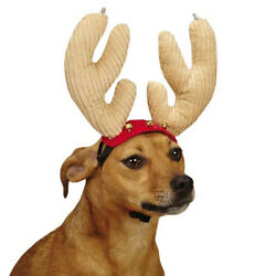Aria Jolly Jingle Dog Antlers Holiday Christmas LIGHTS UP lighted Pet