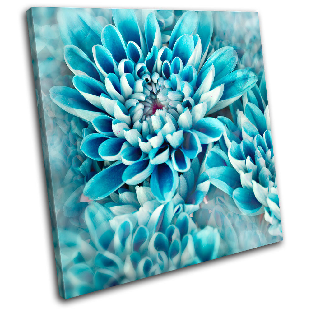 Zinnia blue flower floral single canvas wall art picture for Flower paintings on canvas