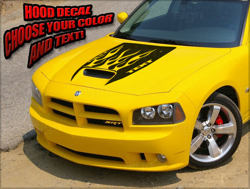 2006 07 08 09 2010 Dodge Charger Srt8 Super Bee Daytona