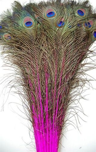 50 pcs dyed peacock feathers 30 35 hot pink crafts art for Where to buy craft feathers