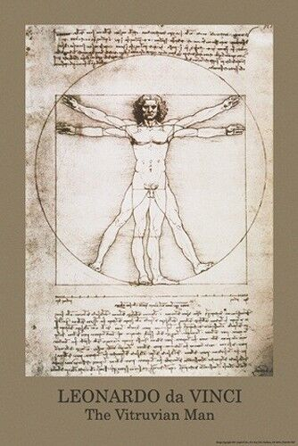 leonardo da vinci vitruvian man poster 61x91cm picture print new art ebay. Black Bedroom Furniture Sets. Home Design Ideas