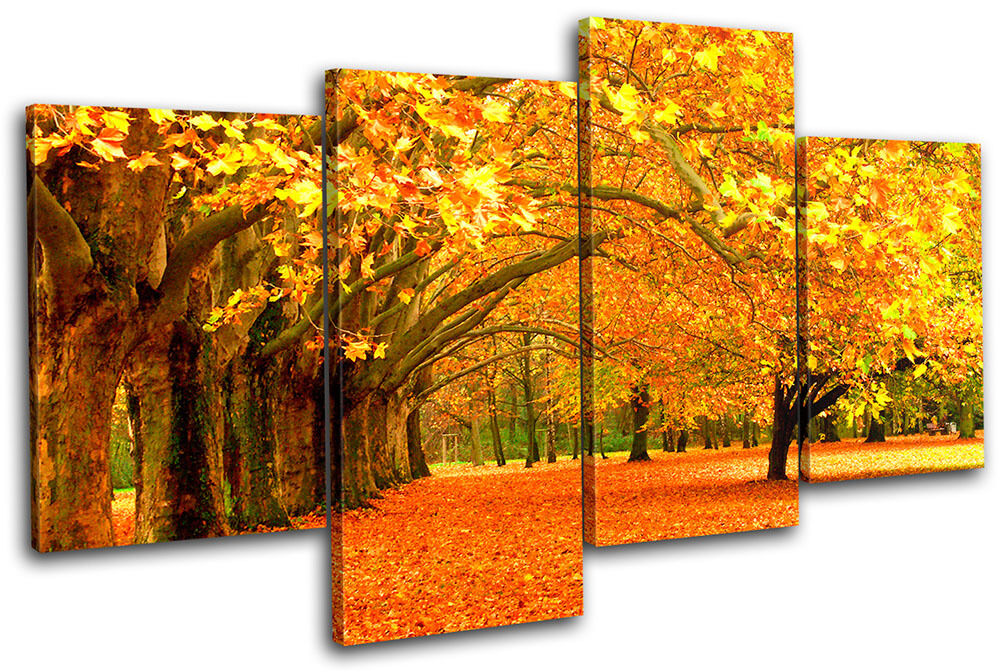 Autumn Trees Landscapes MULTI CANVAS WALL ART Picture ...