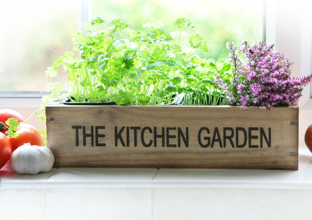Kitchen herb wooden planter window sill box garden plant Kitchen windowsill herb pots