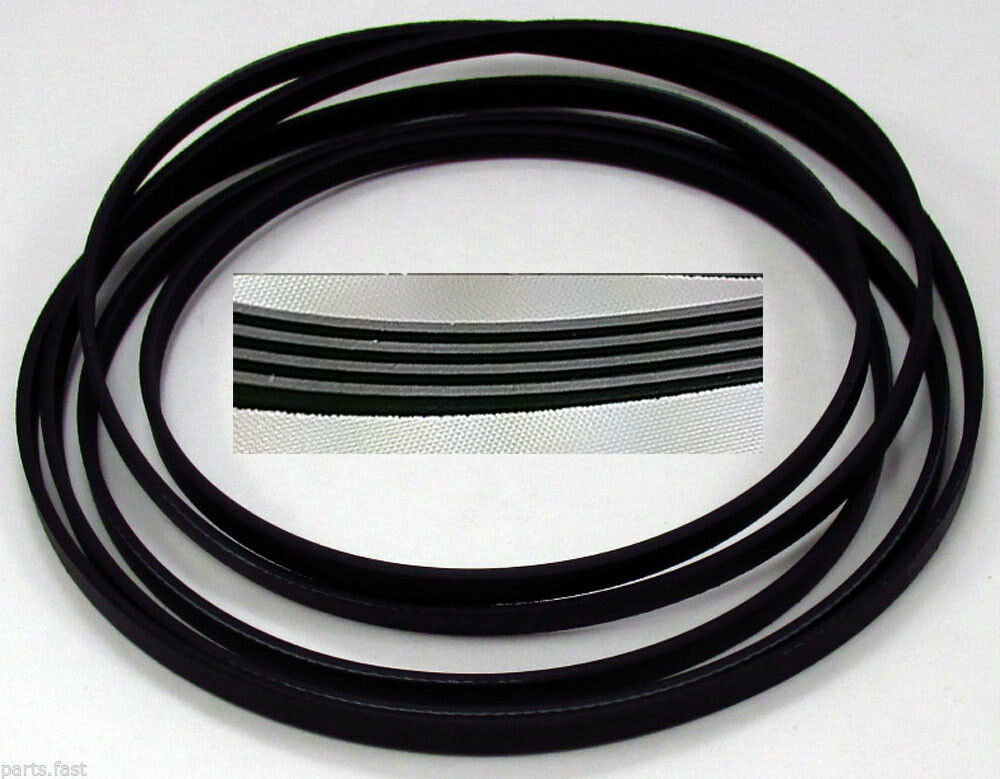 31531589 New Maytag Dryer Replacement Belt Ebay
