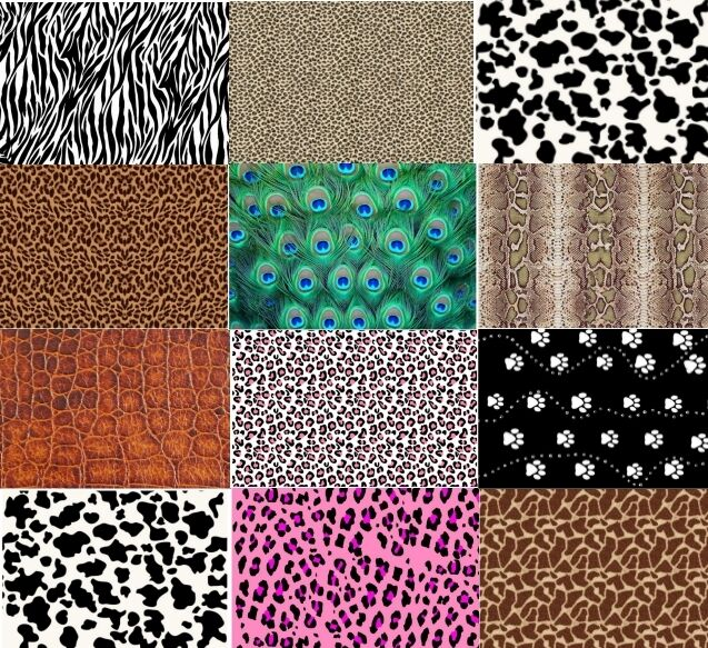 Cake board decorations animal print edible a4 icing sheets for Animal print edible cake decoration