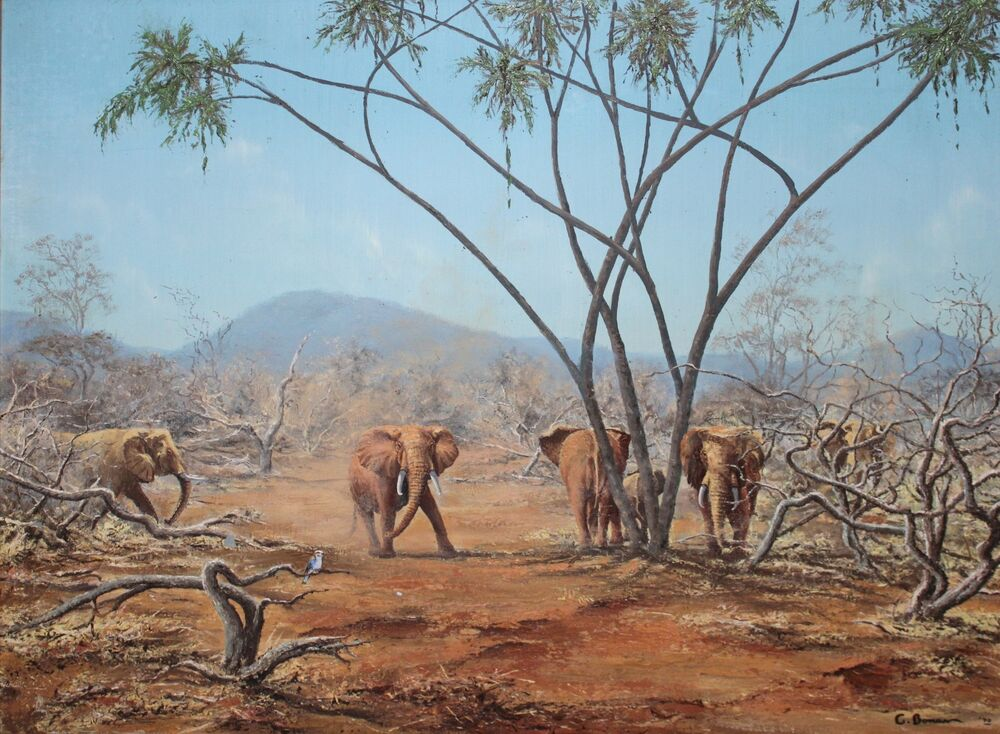 Oil Paintings Of African Elephants