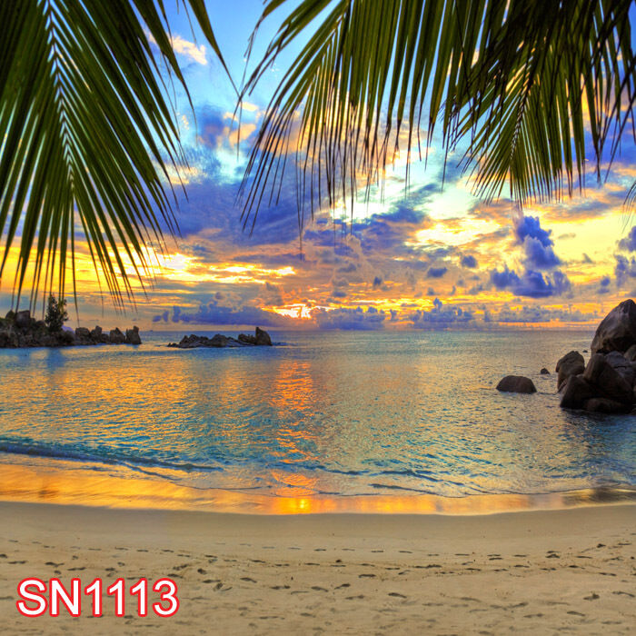 SUMMER BEACH OUTDOOR 8x8 FT CP PHOTO SCENIC BACKGROUND