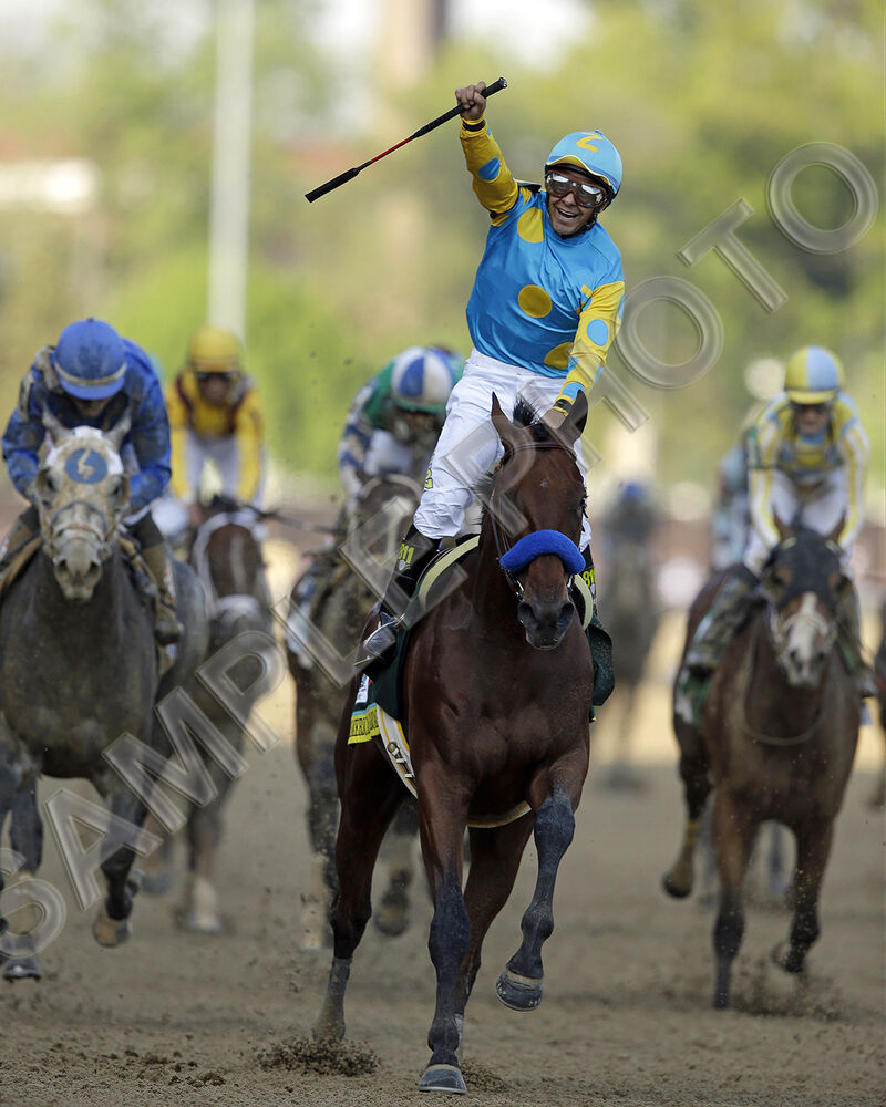 Details about  AMERICAN PHAROAH KENTUCKY DERBY TRIPLE CROWN HORSE 16 X 20 PHOTO POSTER
