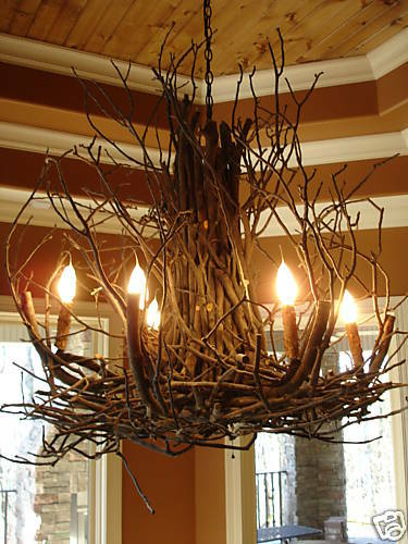Rustic Foyer Pendant Lighting : Deanna wish design branchelier rustic twig light branch