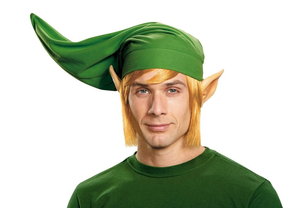 Deluxe Link ADULT Costume Accessory Kit Hat Wig Ears The ...