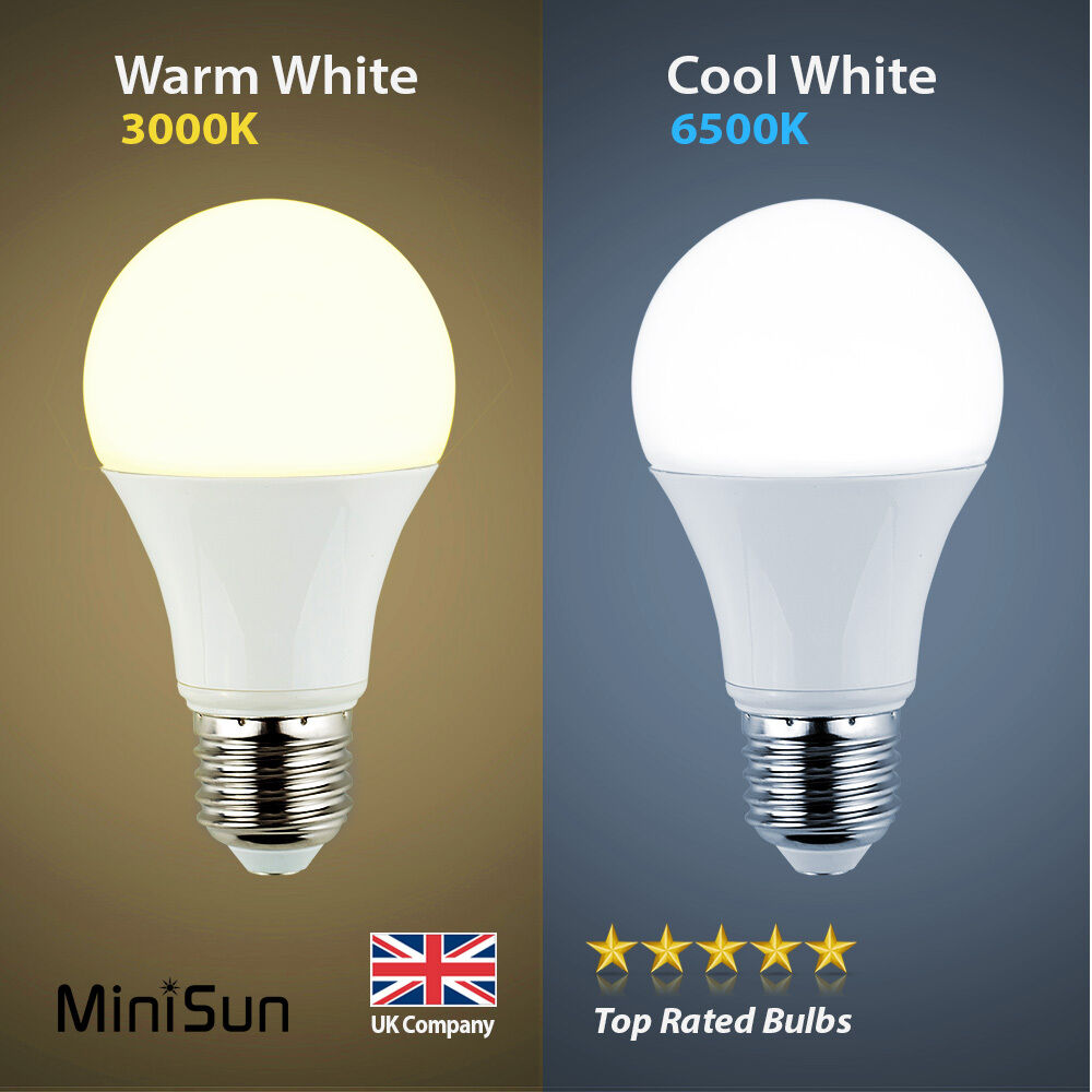minisun 6w 10w led 60w 100w es e27 gls lamp light bulbs warm or cool day white ebay. Black Bedroom Furniture Sets. Home Design Ideas