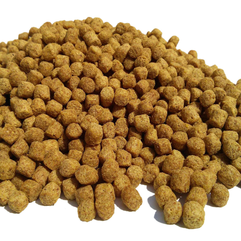 51 lbs 1 4 af floating pellets free samples ebay for Best food for koi fish