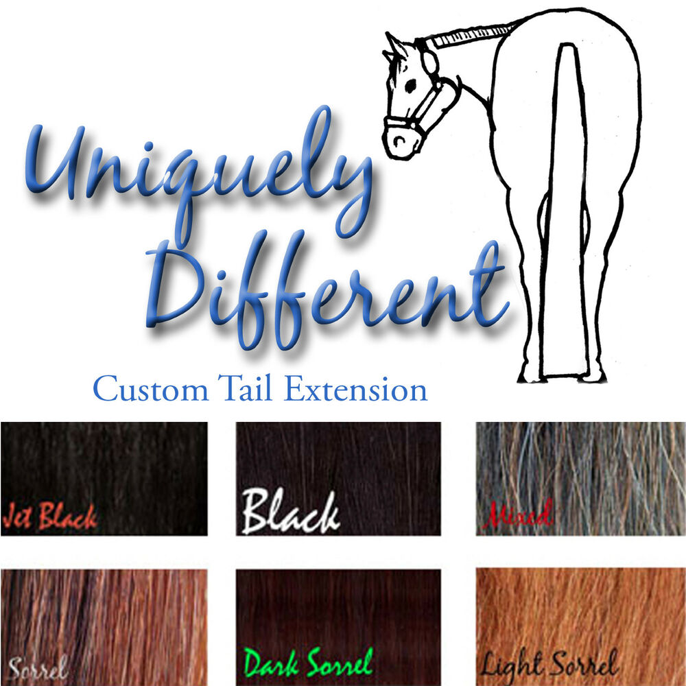 Custom Made 34 Pound Horse Tail Extension Black Sorrel And