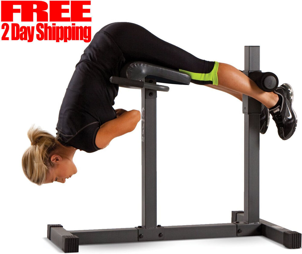 Apex Roman Chair Hyper Extension Bench Sit Up Exercise New