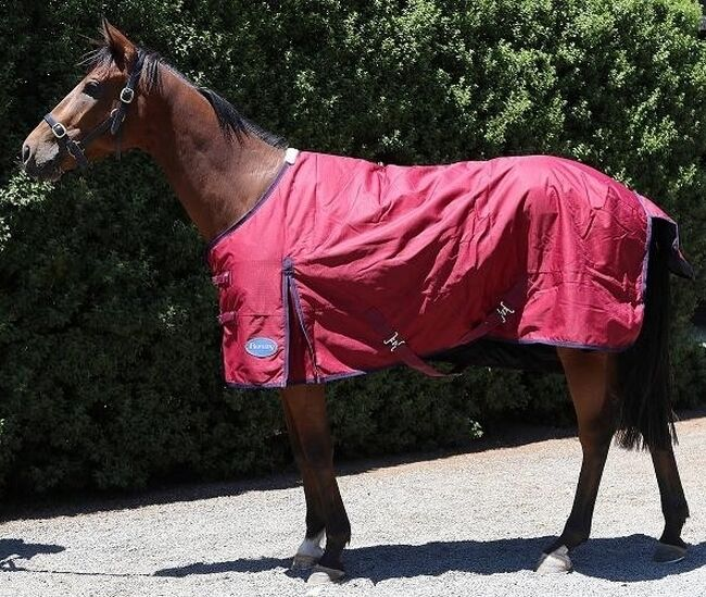 Barnsby Equestrian Waterproof Horse Winter Blanket Turnout