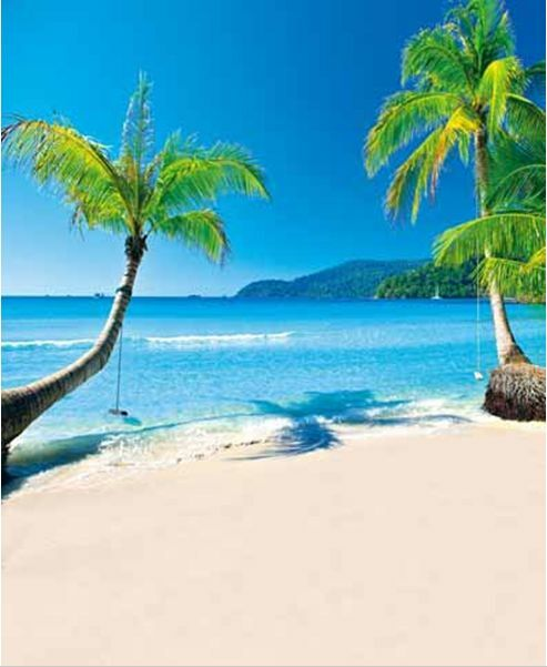 Beach Island: 10x10FT Palm Tree Blue Sea Beach Island Custom Photo