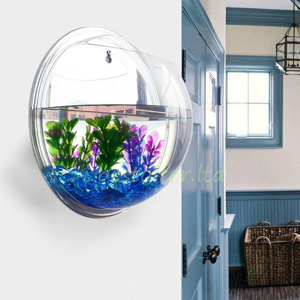 Small wall mounted acrylic fish tank hanging bowl bubble for Acrylic vs glass fish tank