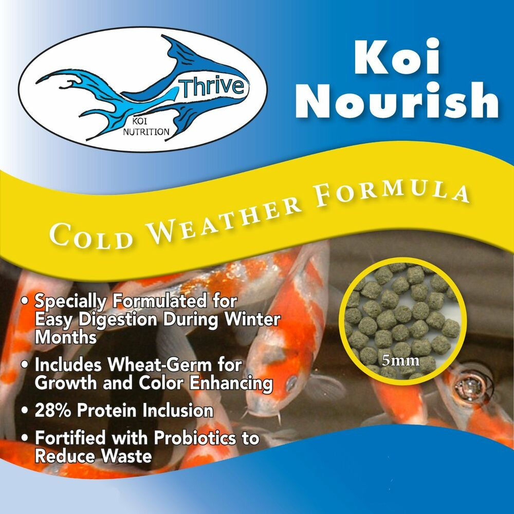 Anjon thrive koi nourish cold weather formula koi food ebay for Best food for koi fish