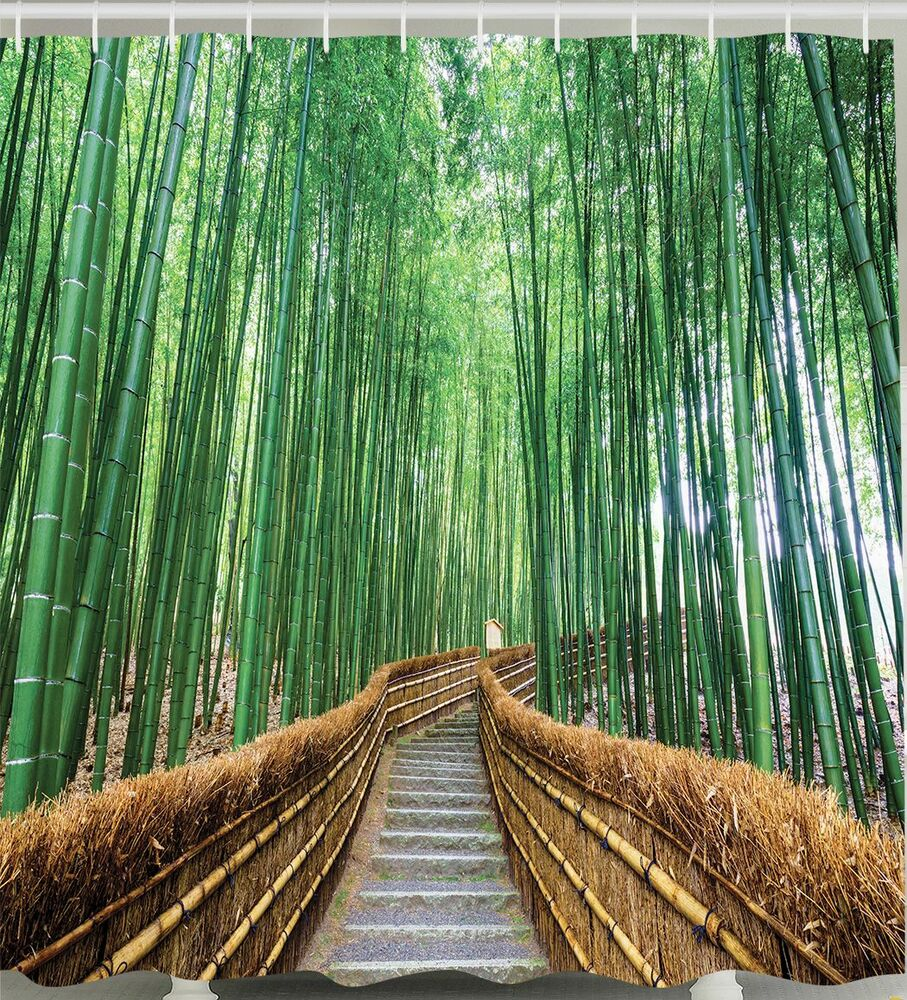 Bamboo nature walking path zen fabric shower curtain asian for Decoration zen et nature