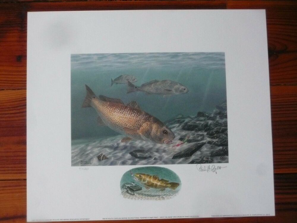 South carolina saltwater fish prints signed remarqued for Sc saltwater fish