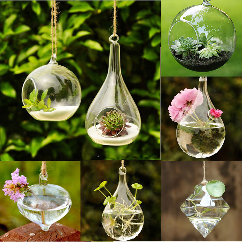 Hanging Glass Flower Plant Vase Terrarium Container Home