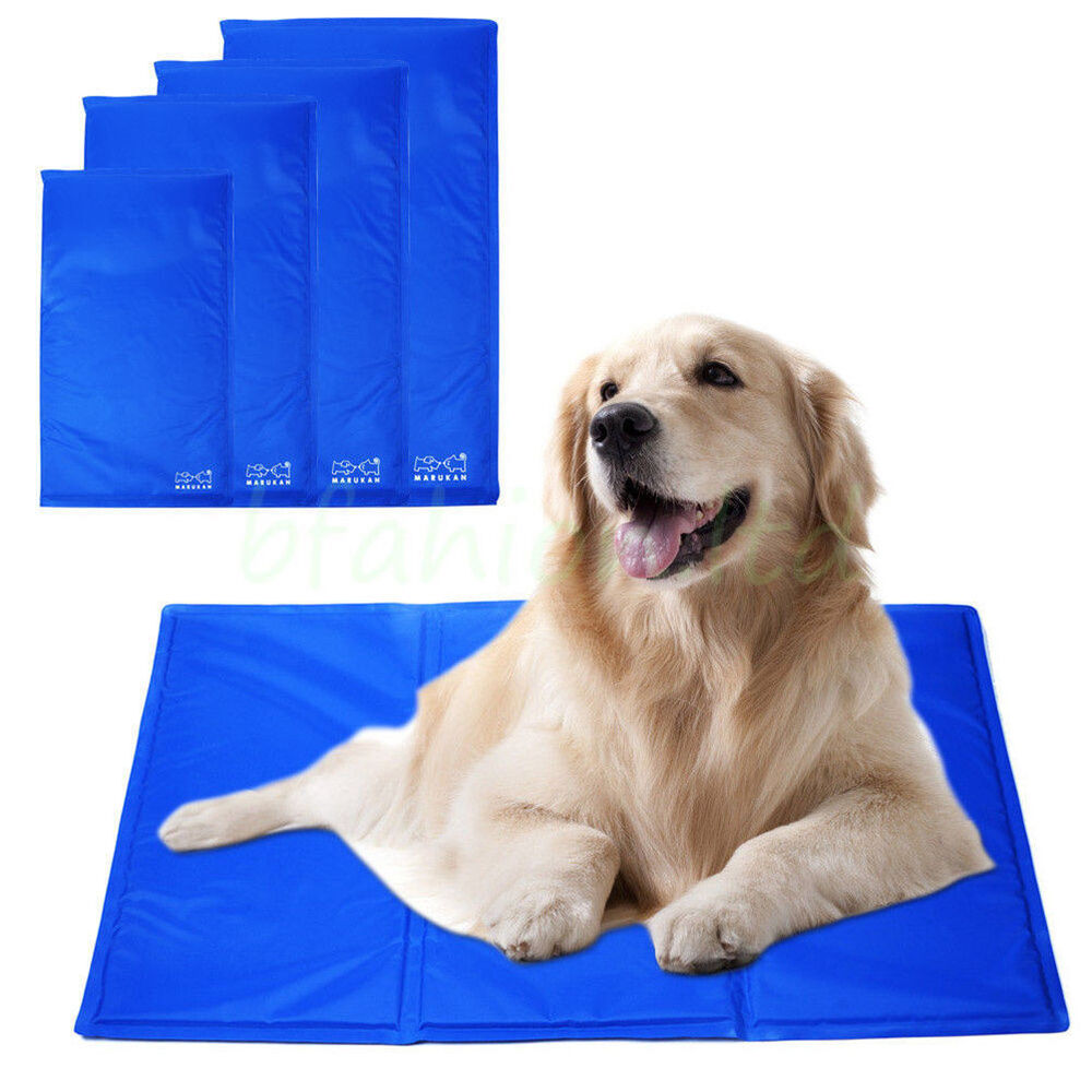 pet beds cooling pad dogs cat chilly mat gel chillz for. Black Bedroom Furniture Sets. Home Design Ideas