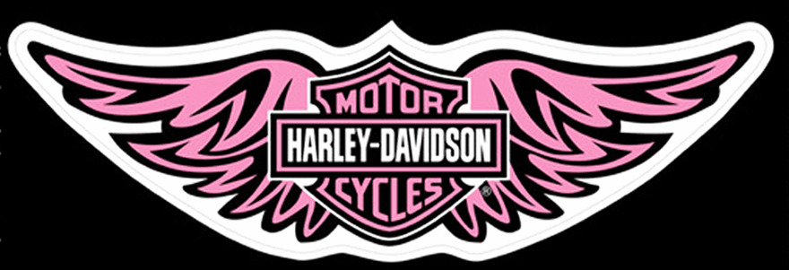 HARLEY DAVIDSON LADIES PINK STRAIGHT WING 12 INCH DECAL  EBay