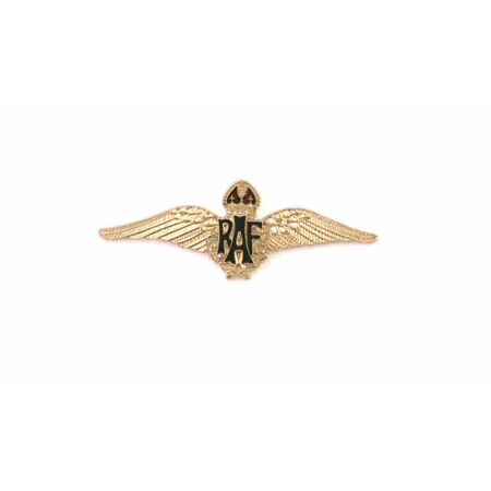 img-RAF Royal Air Force Wings British Enamel pin badge Military gift in pouch BGK2