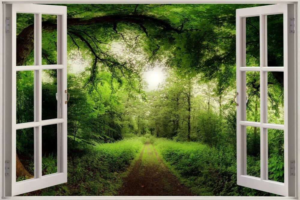 3d Effect Window View Tree Nature Forest Road Sticker Wall