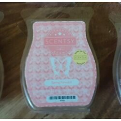 New Scentsy Wax Bars Spring Forward Make offer buy more save more