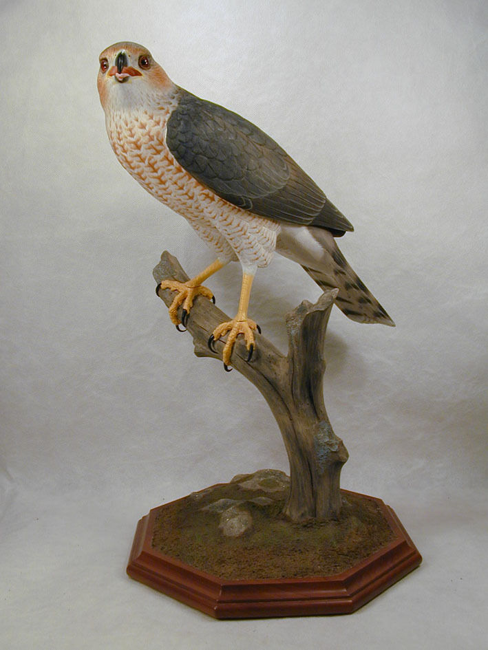 Cooper s hawk original wood carving ebay