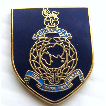 img-THE ROYAL MARINES MILITARY NAVY LAPEL PIN BADGE FREE GIFT POUCH MOD APPROVED