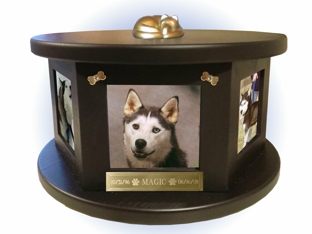 Dog Urn Box With Multiple Pictures