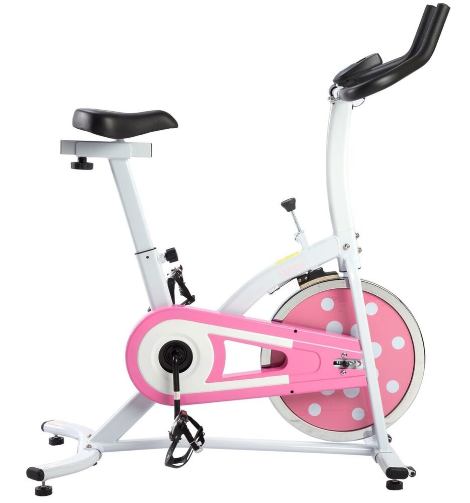 Sunny Indoor Cycling Upright Exercise Bike Stationary ...