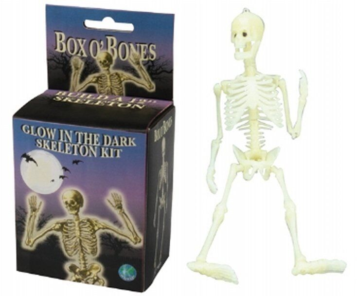 glow in the dark human skeleton model kit halloween box of bones, Skeleton