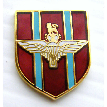 img-THE PARAHUTE REGIMENT BADGE PARAS ARMY MILITARY LAPEL PIN FREE GIFT POUCH MOD AP