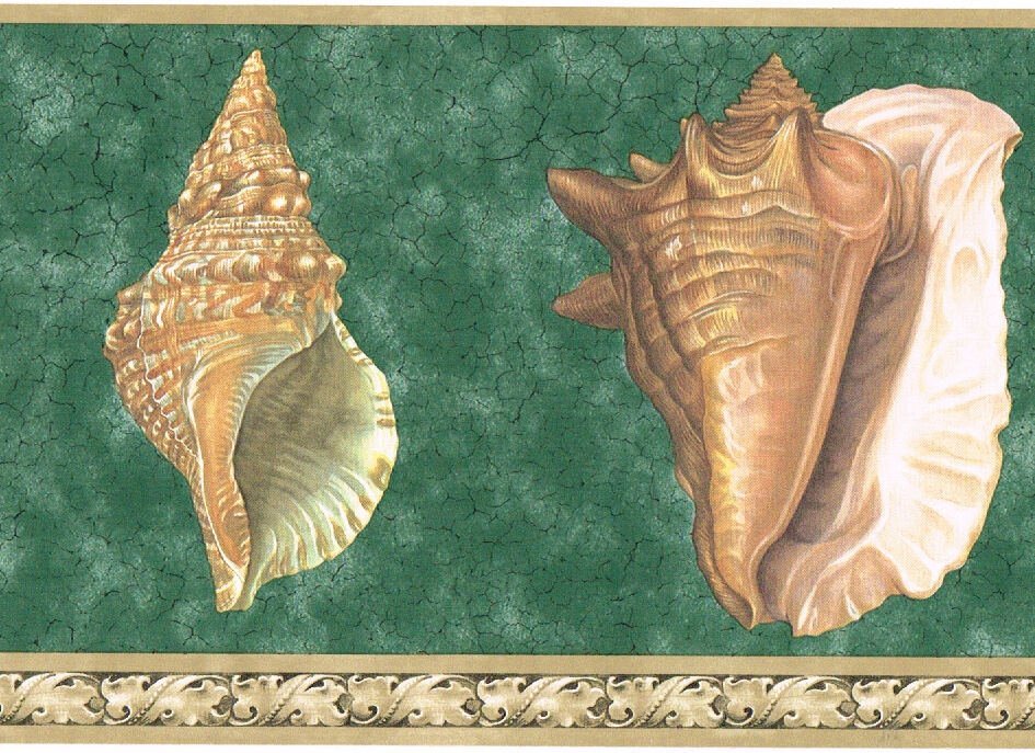 victorian seashells bathroom green beige scroll leaf wall paper border ebay. Black Bedroom Furniture Sets. Home Design Ideas