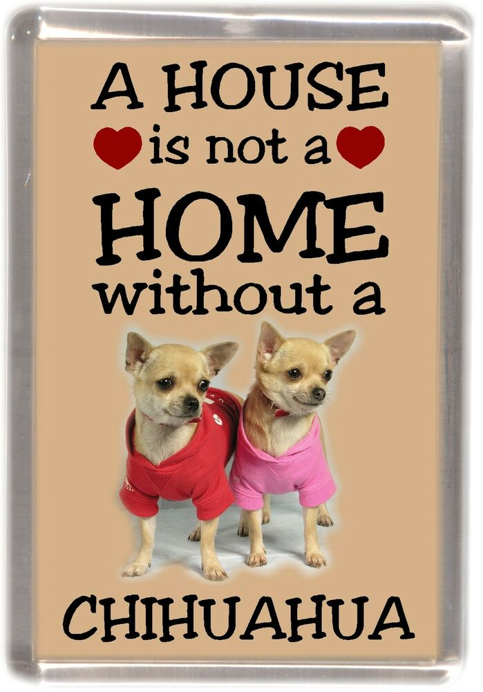chihuahua dog no 4 fridge magnet a house is not a home by starprint ebay. Black Bedroom Furniture Sets. Home Design Ideas