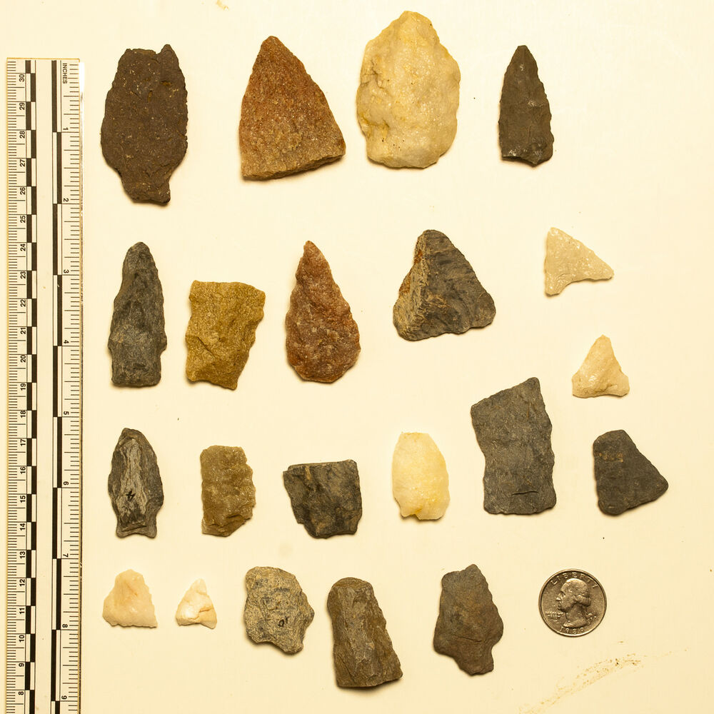 Maryland Native Plants: Maryland Native American Arrowheads Points Found In Del