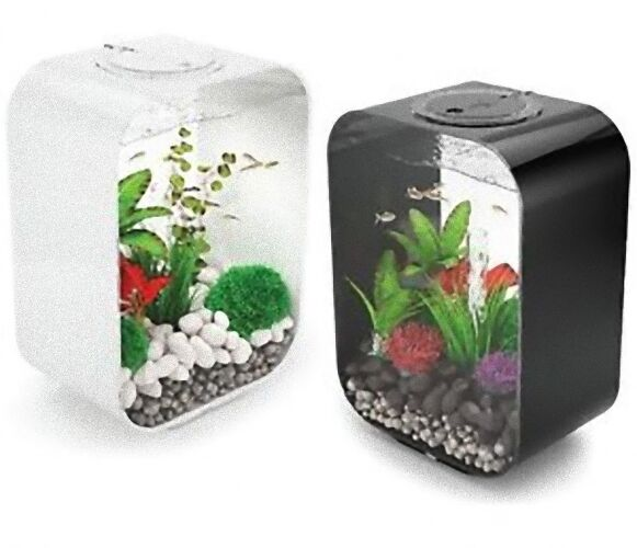 reef one biorb life aquariums 15l 30l 45l 60l stylish modern nano aquariums ebay. Black Bedroom Furniture Sets. Home Design Ideas