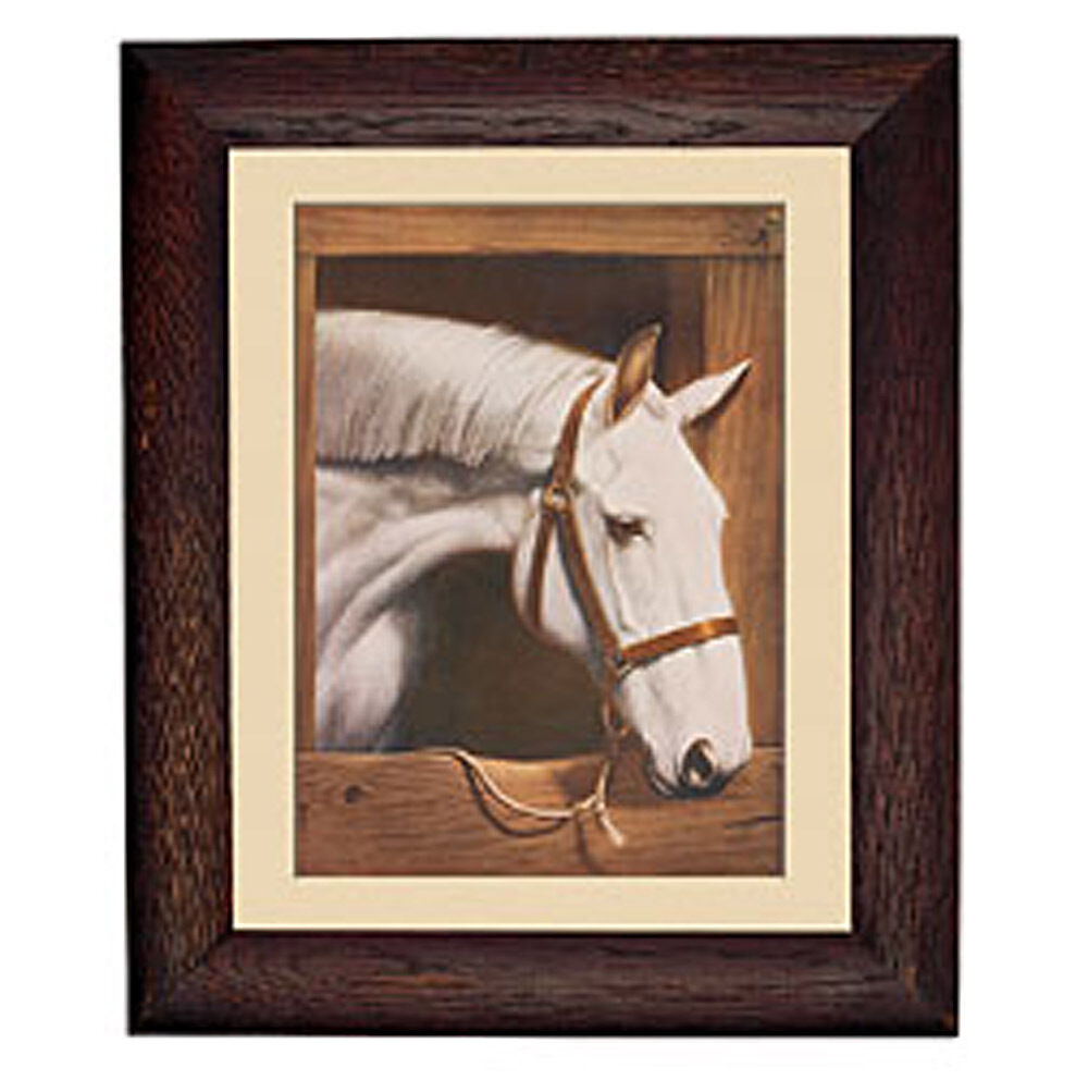 Old dobbin horse in stall rustic frame equestrian mural for Barnyard wall mural