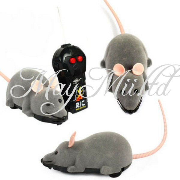 Electronic Remote Control : Electronic remote control mouse toy for trick playing with