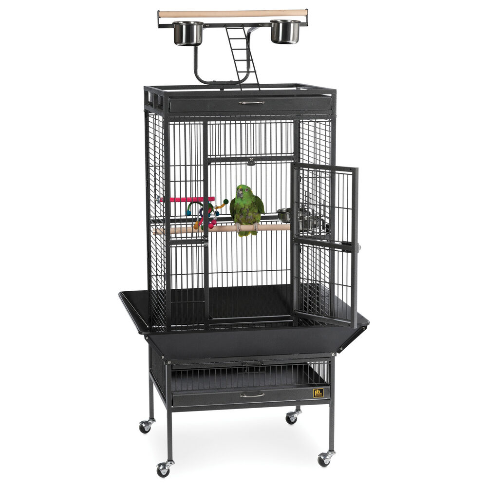 Prevue pet products wrought iron select bird cage with