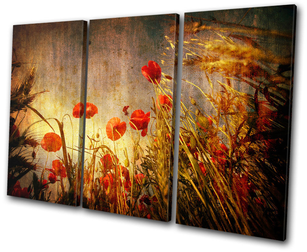 Floral poppies flowers treble canvas wall art picture for Floral wall art