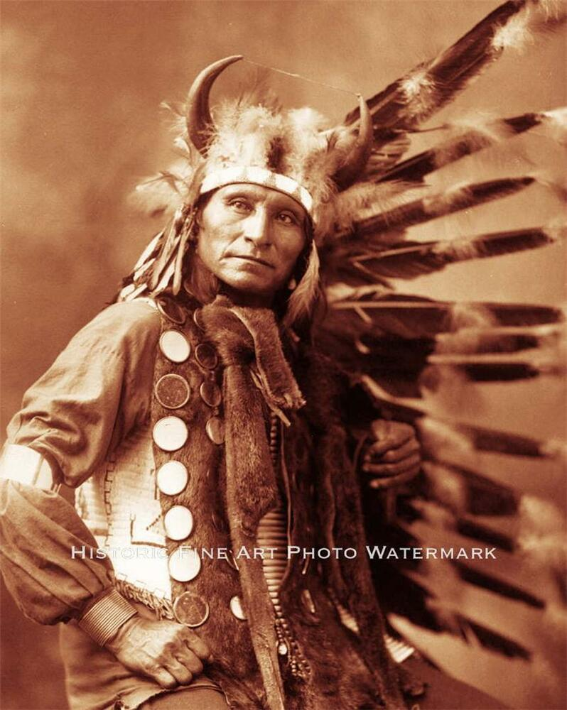 lakota indian essay In her essay what's in a name indians and political correctness, christina berry american indian, and native american an over simplification of a diverse.