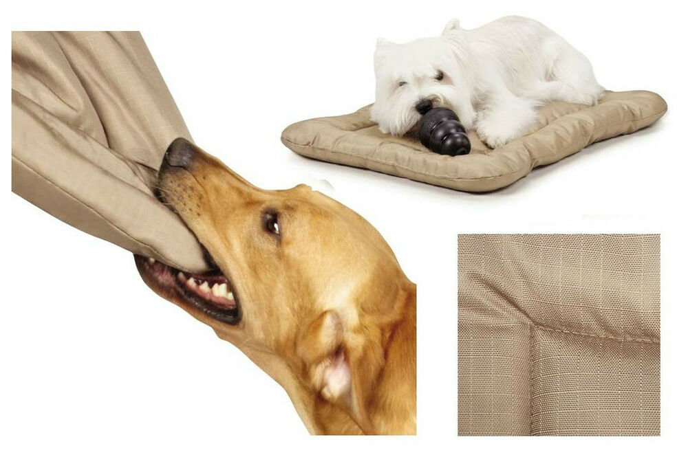 Dog Bed Mats Kennels Soft Puppy Warm Lounger Sofa House Pet Dog Beds for Small Dogs Big Basket