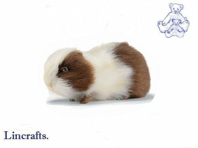 Guinea Pig Toys : Brown white guineapig guinea pig plush soft toy by hansa